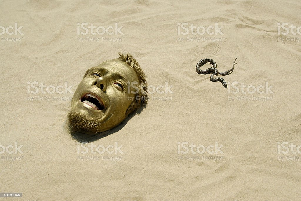 goldkopfschlangehorror stock photo