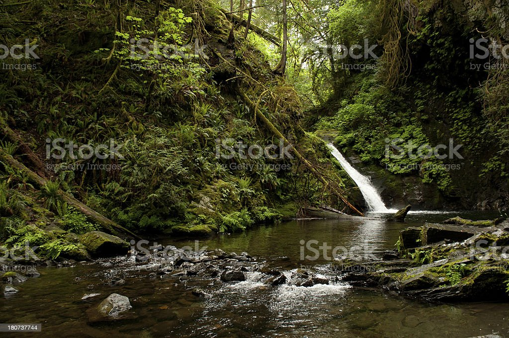 Goldstream park stock photo