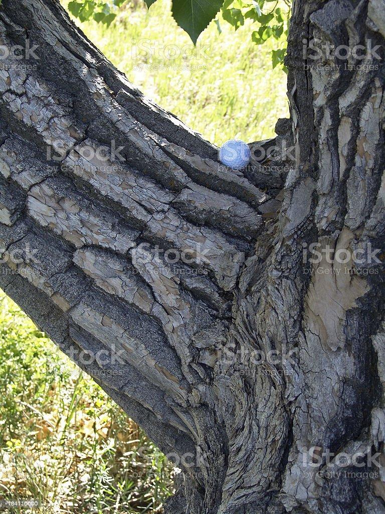 Golf, Bad Lie royalty-free stock photo