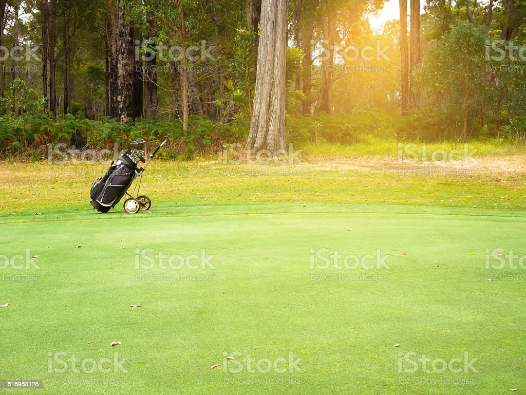 Golf bag and clubs stock photo