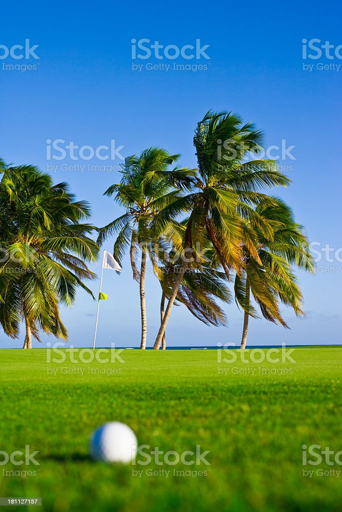 Golf Ball and palm trees. royalty-free stock photo