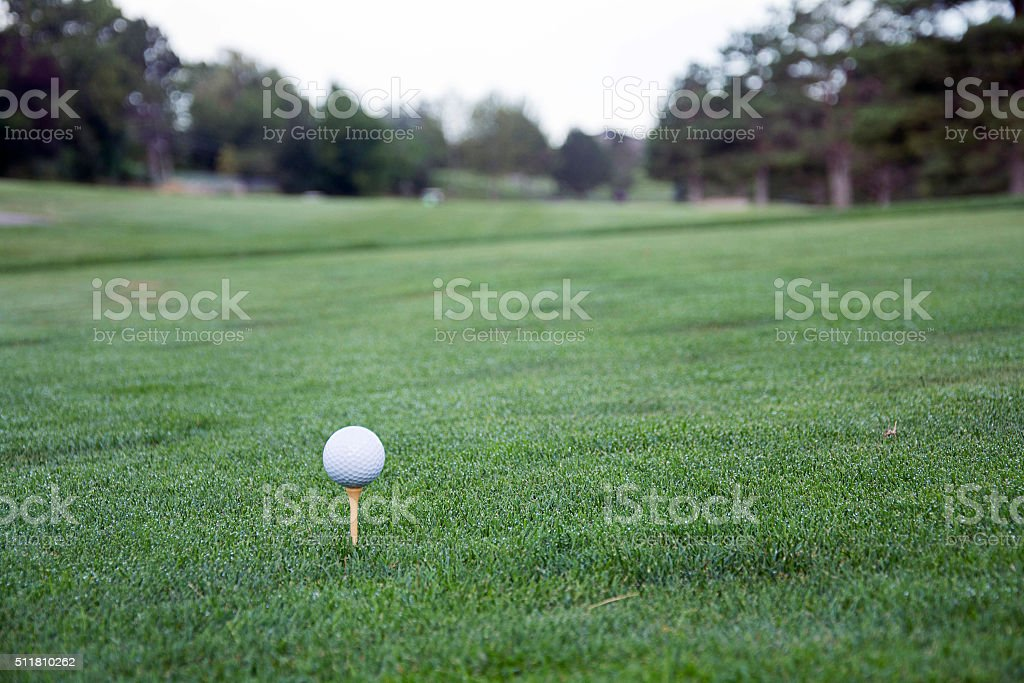 golf ball and tee in grass stock photo