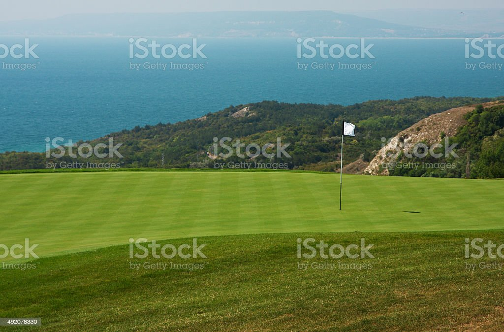 Golf ball in a green course and hole