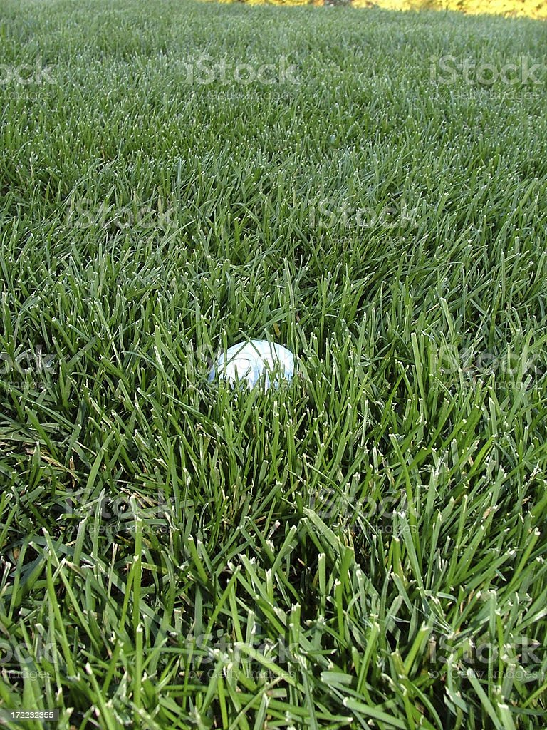 Golf Ball in Deep Grass royalty-free stock photo