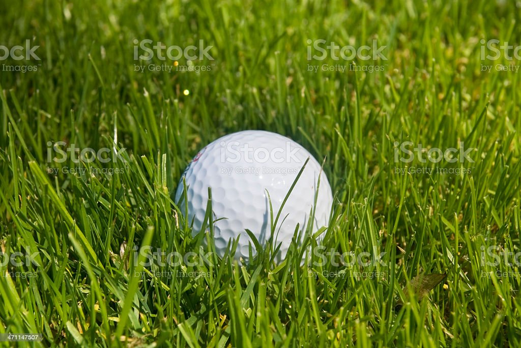 golfball in grass royalty-free stock photo