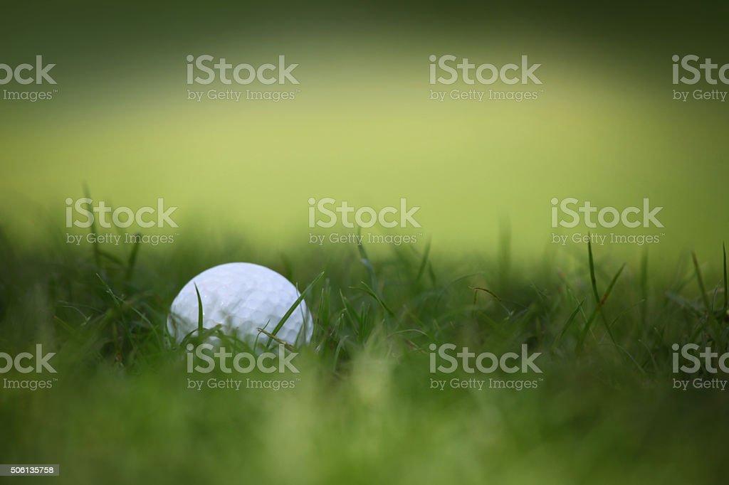 Golf ball in grass stock photo