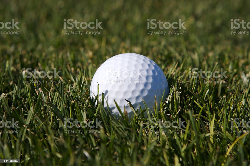 Golf ball in light rough stock photo