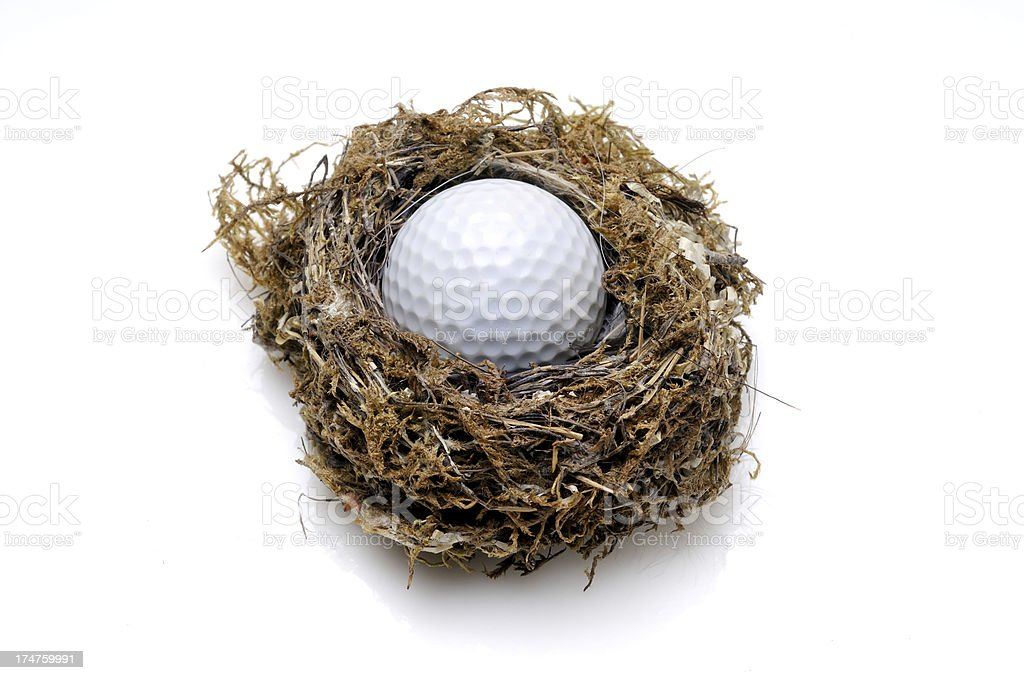 Golf Ball In The Nest stock photo