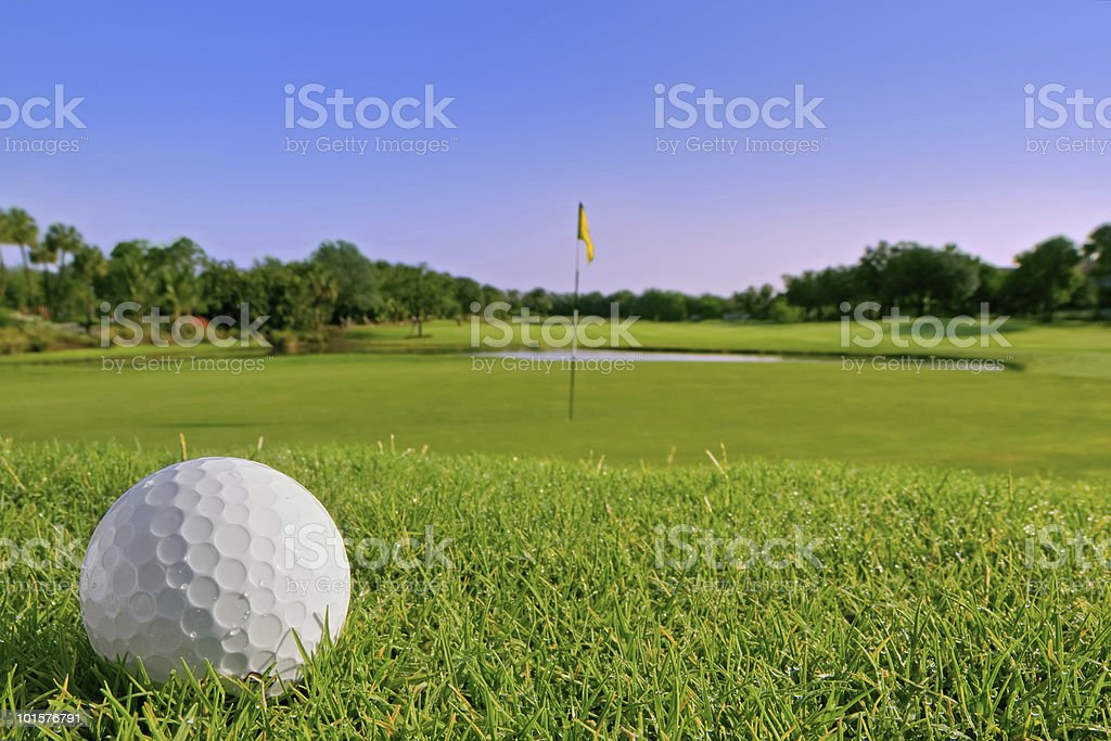 golf ball lies just above green stock photo