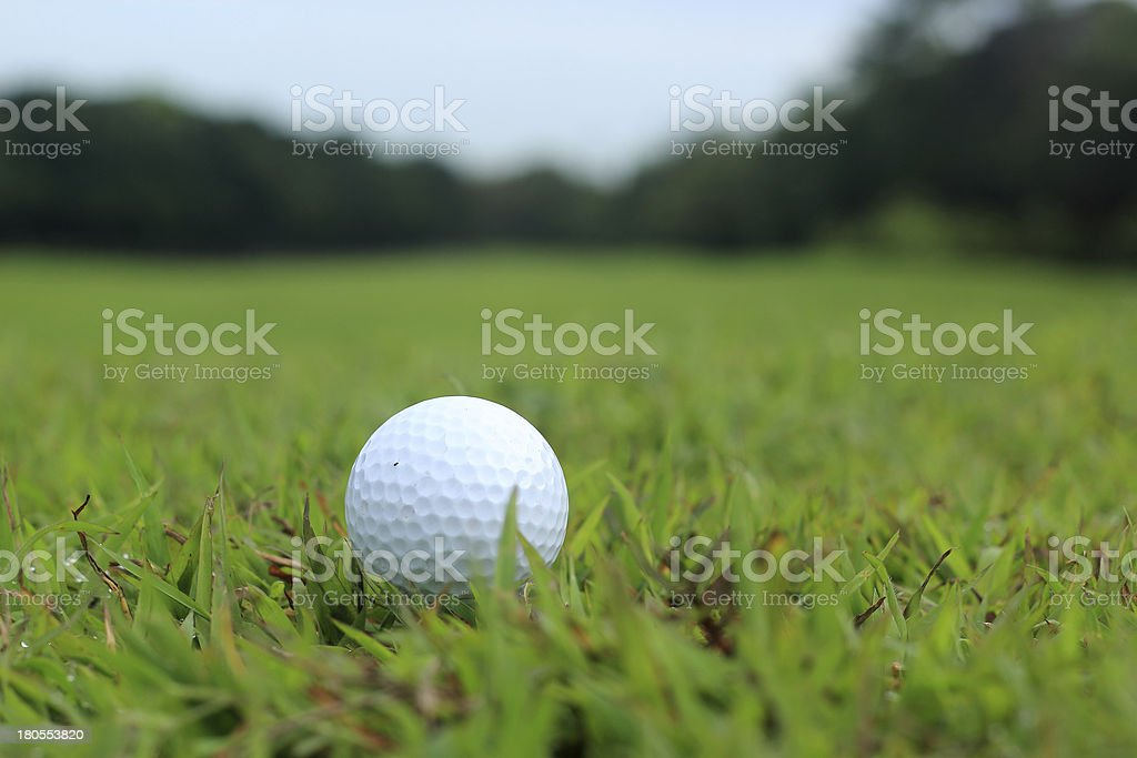 Golf ball lying in the fairway royalty-free stock photo