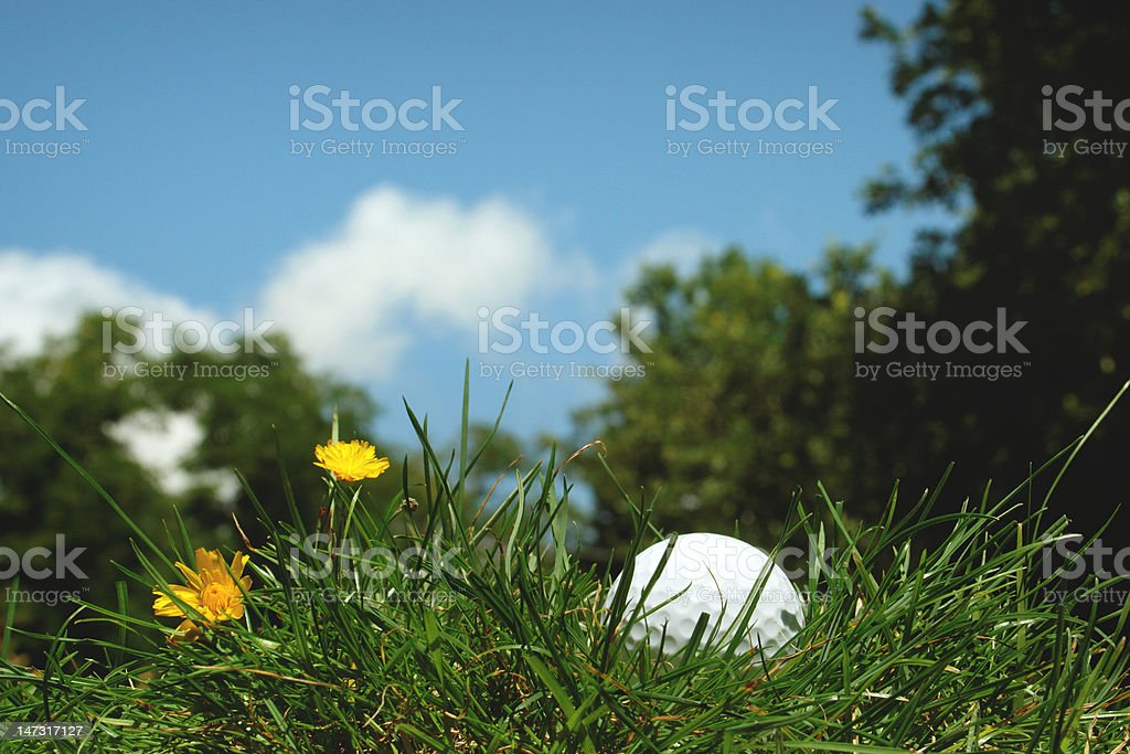 golf ball mislaid stock photo