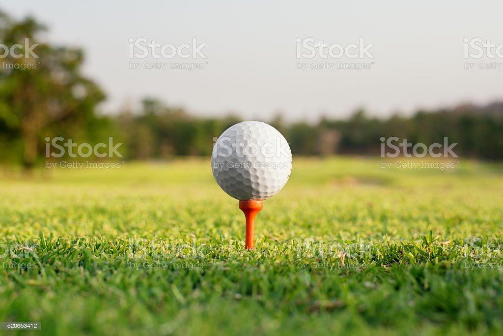 Golf ball on a tee against the golf course stock photo