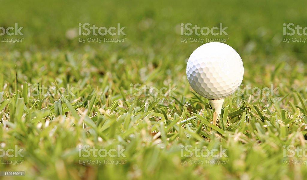 \'Golf ball on a tee, fresh cut grass, nice light.\'