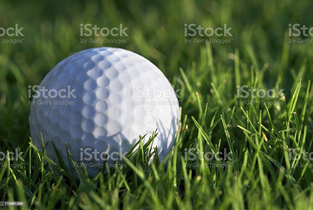 Golf Ball on fairway royalty-free stock photo