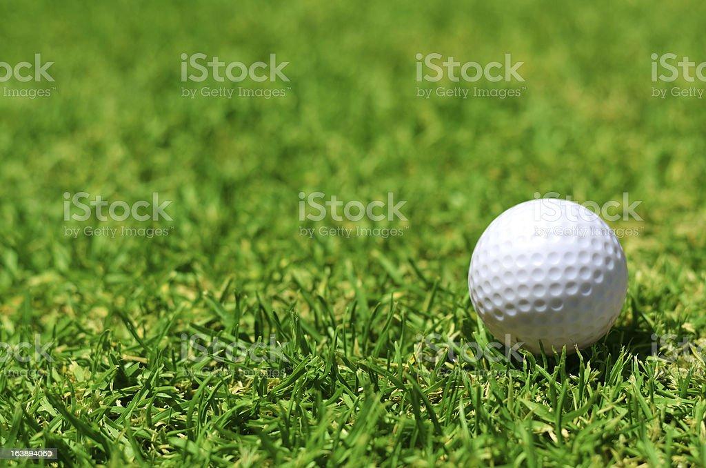 Golf Ball on Grass royalty-free stock photo