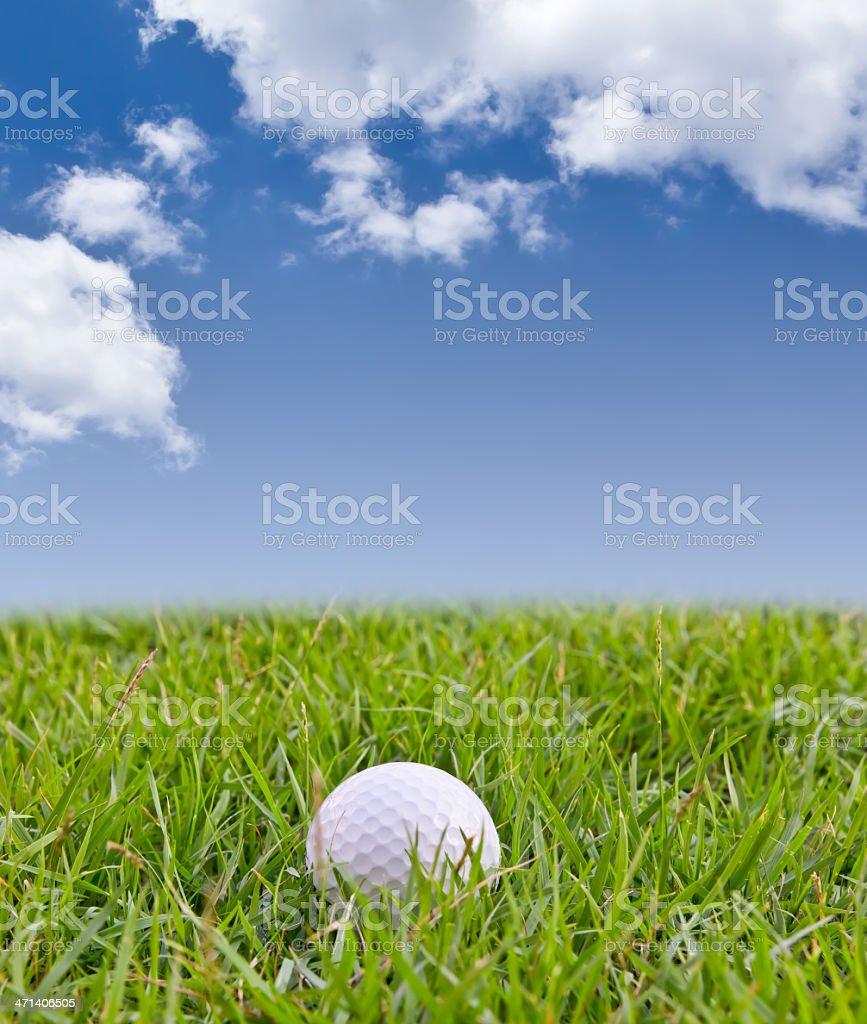 Pallina da golf con erba alta foto stock royalty-free