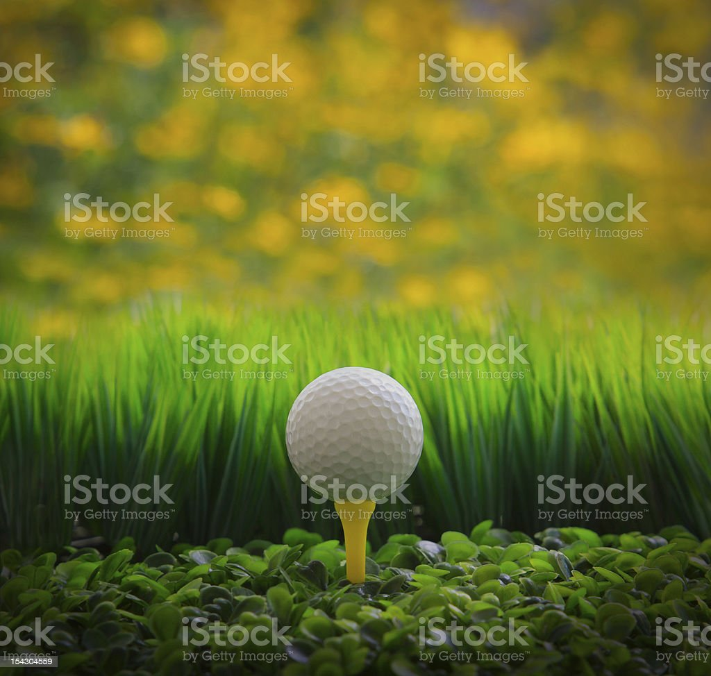 golf ball on tee and green grass yellow blur background royalty-free stock photo