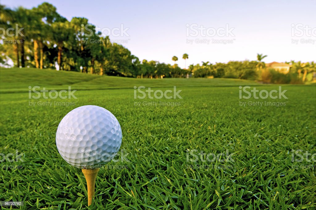 golf ball on tee in early morning stock photo