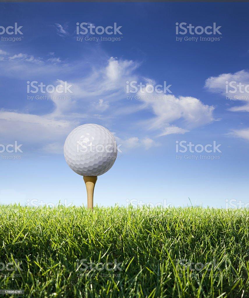 Golf ball on tee in grass stock photo
