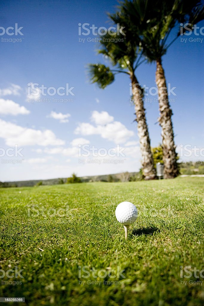 Golf Ball on Tee with Palm Trees royalty-free stock photo