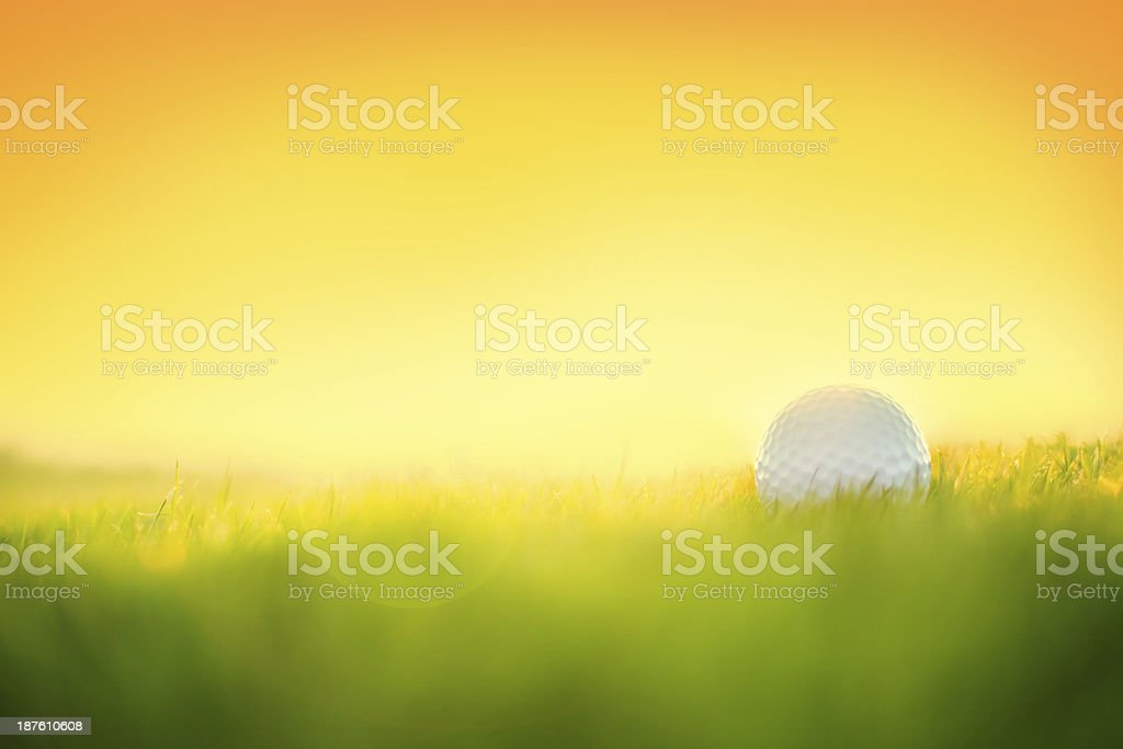 Golf ball on the green at golf course stock photo