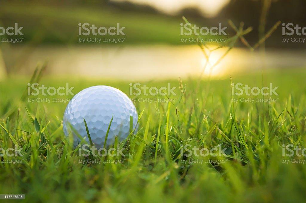 Golf Ball on the ground stock photo