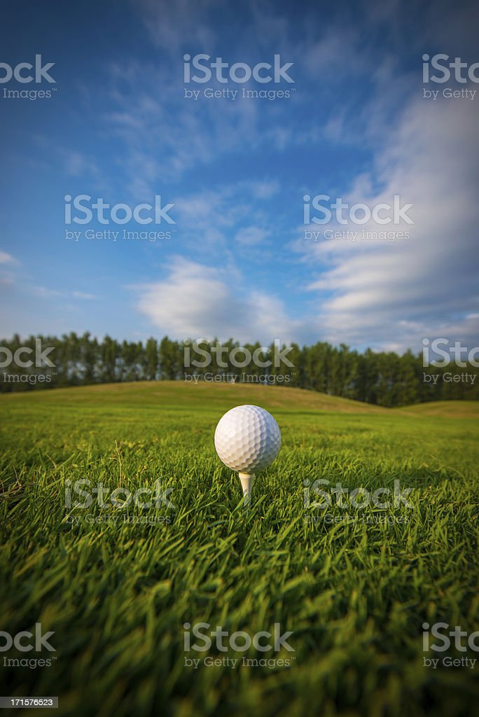 Golf ball on the tee stock photo