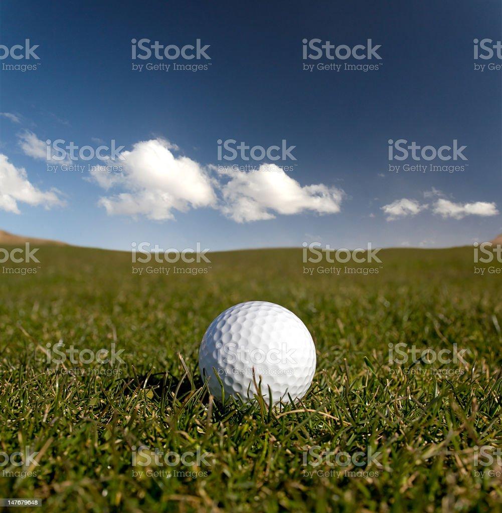 Golf ball on the fairway