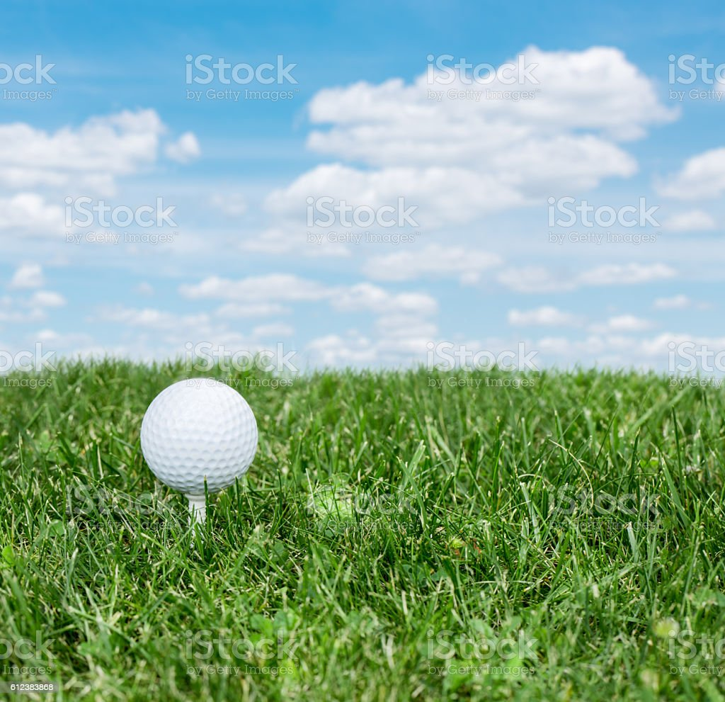 Golf ball ready to be hit on the green grass. stock photo