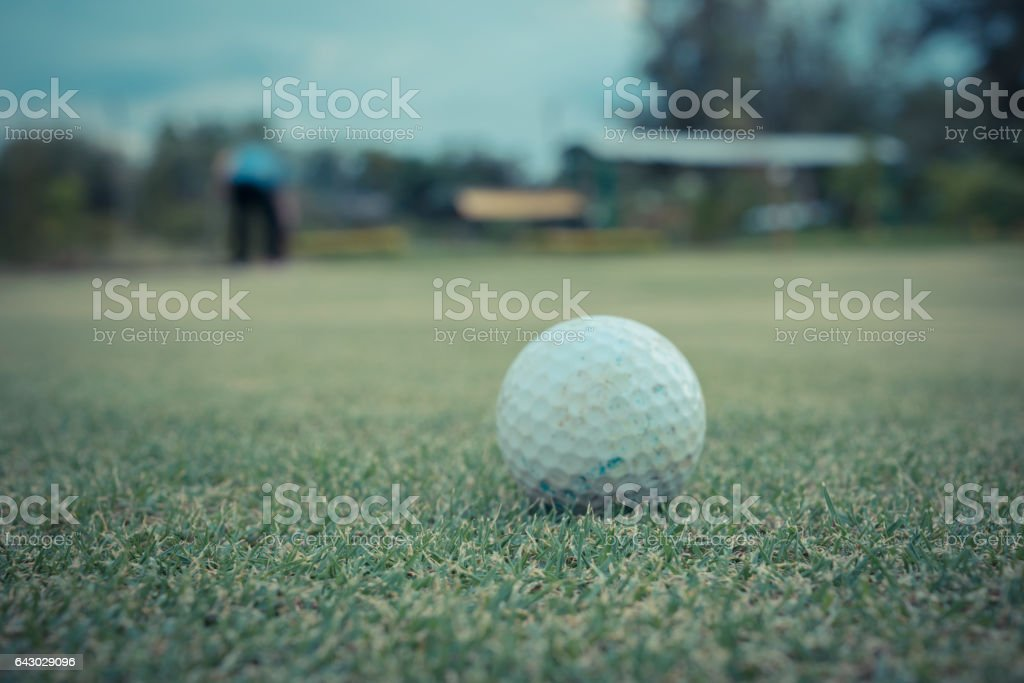 Golf ball white color in golf club on green for sport training and...