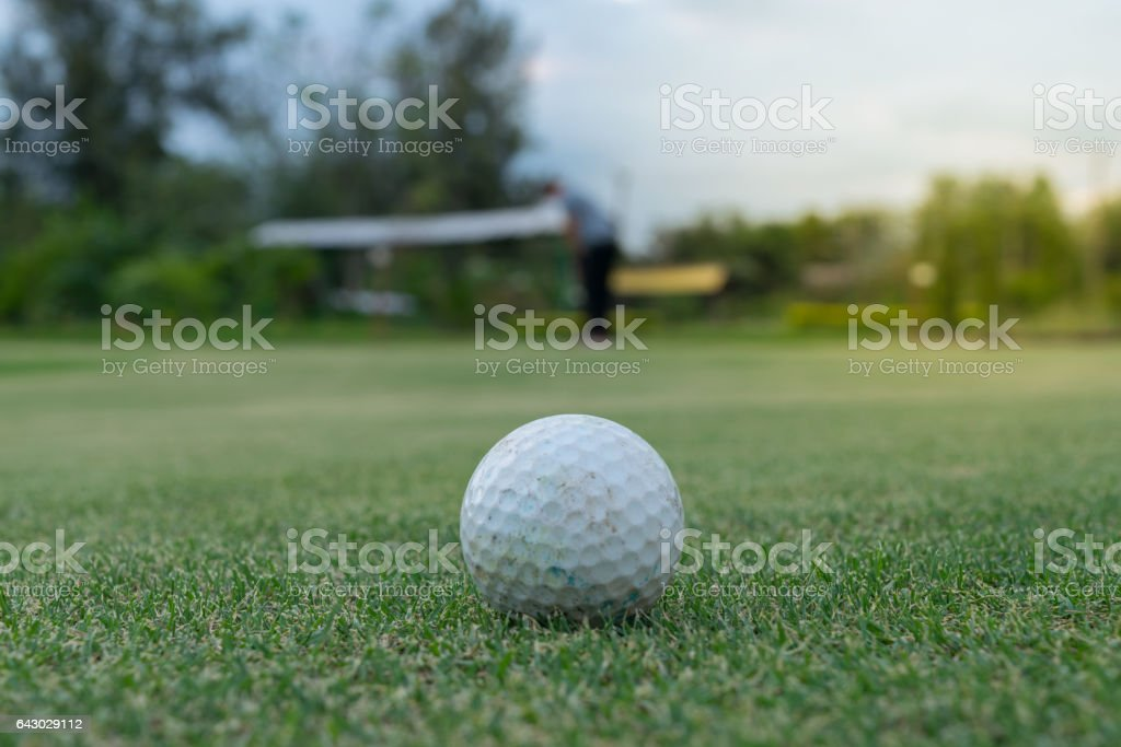 Golf ball white color in golf club on green for sport training ,...