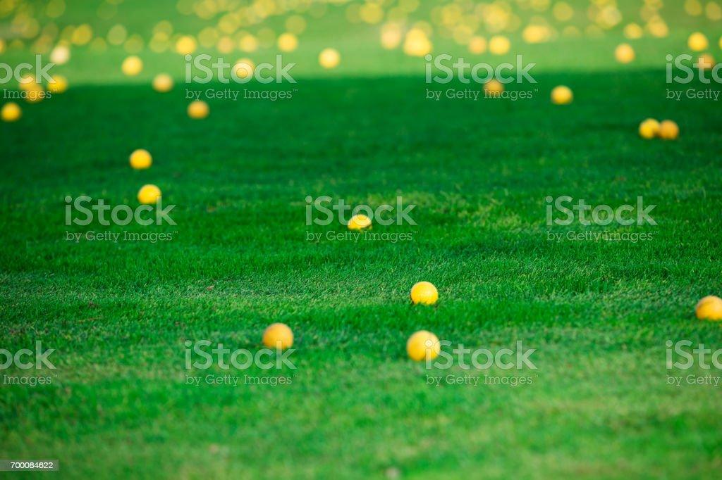 Golf balls on golf course stock photo