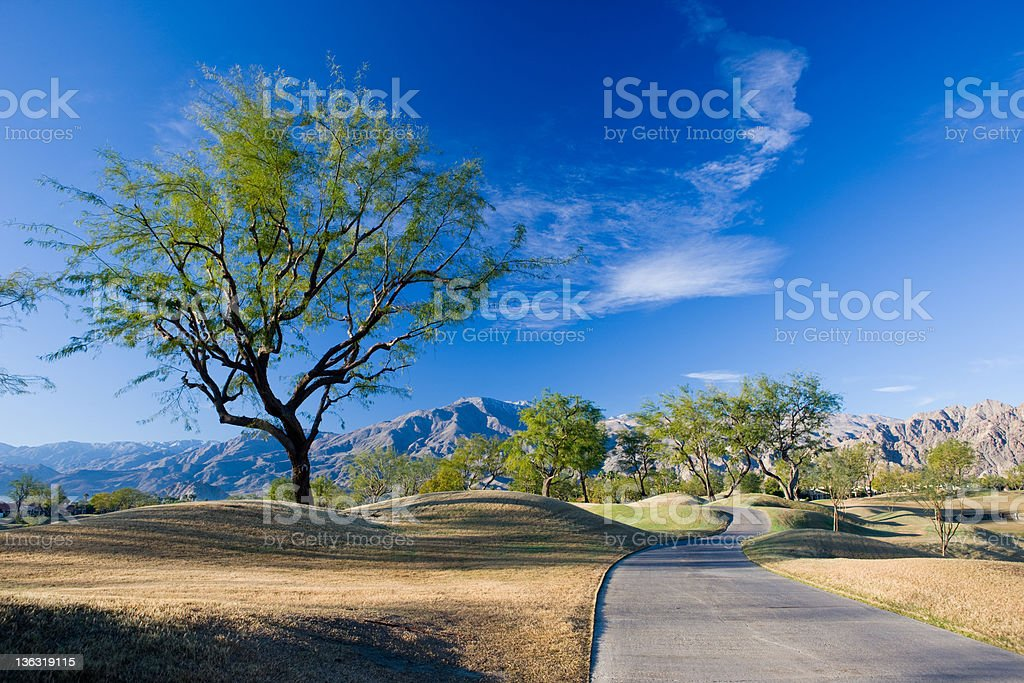 Golf Cart Path With Tree Palm Springs California royalty-free stock photo