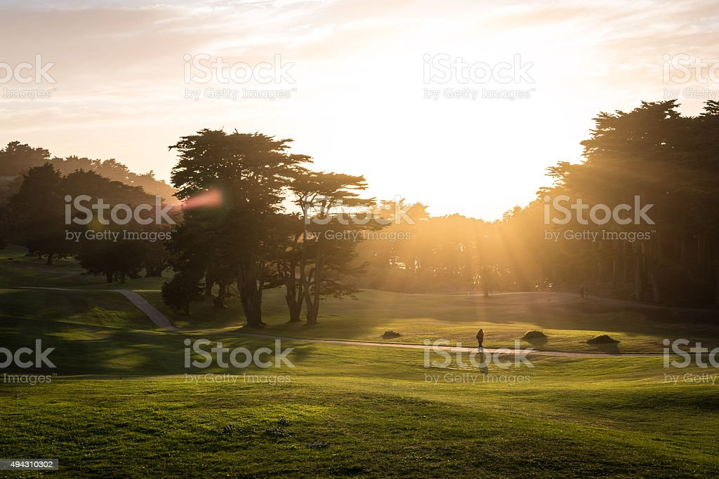 Golf Course at Sunset stock photo