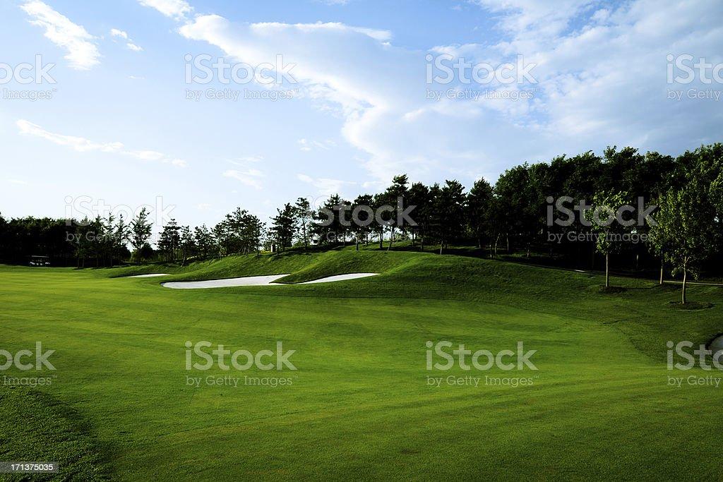 Golf Course Background - XLarge royalty-free stock photo