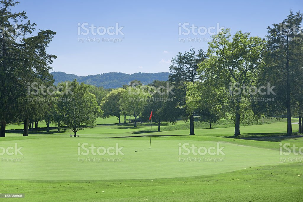 Golf Course Green royalty-free stock photo