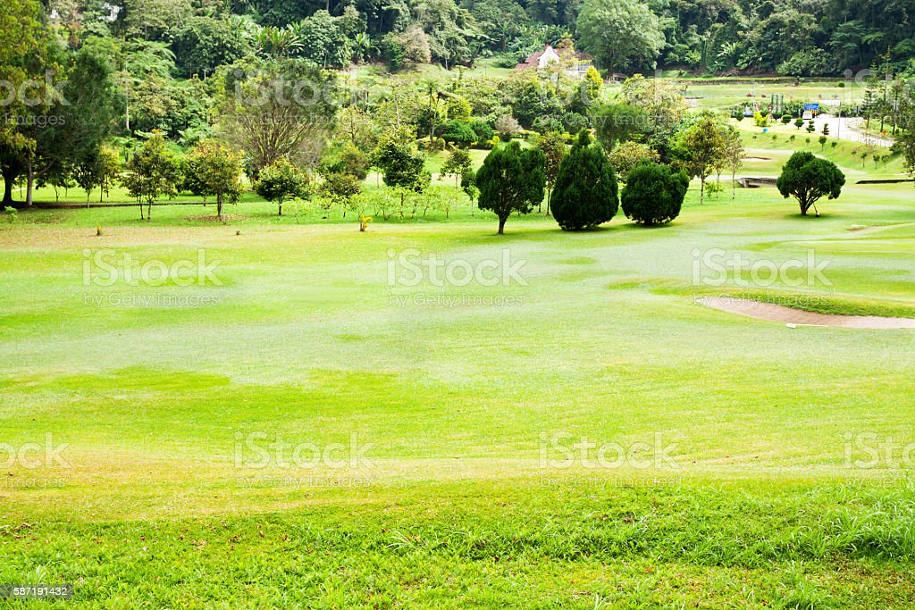 Golf course in Cameron Highlands stock photo