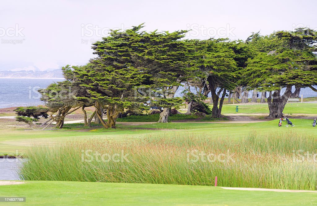 Golf course in Pacific Grove, CA stock photo