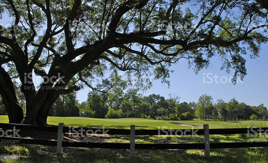 Golf Course in South Carolina royalty-free stock photo