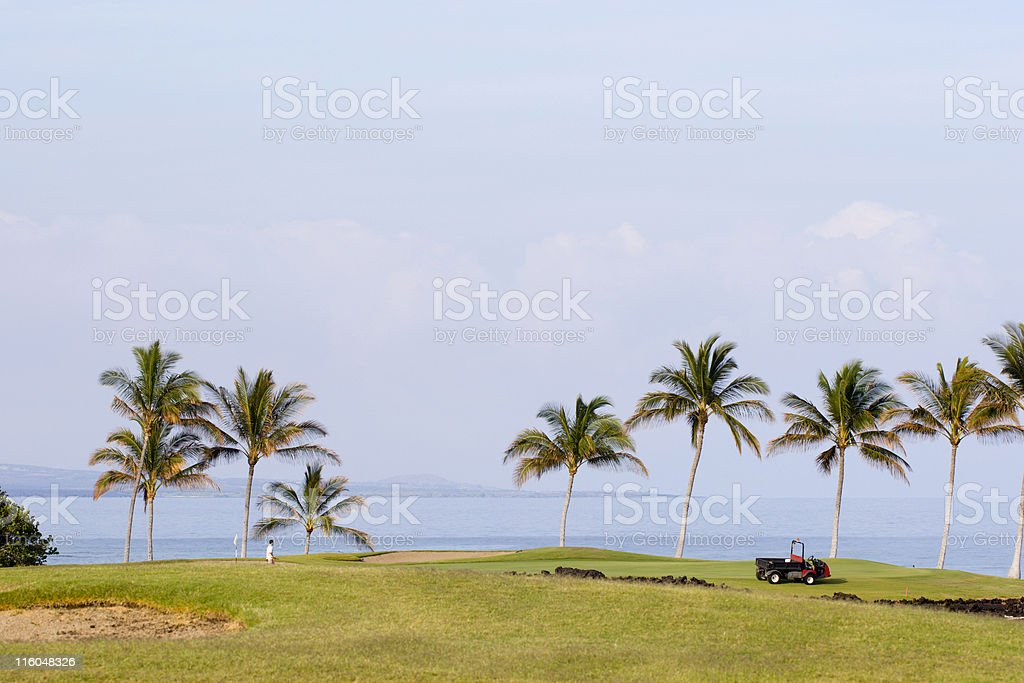 Golf Course Maintenance royalty-free stock photo