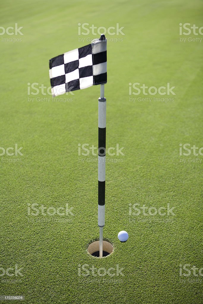 Golf Course Putting Green royalty-free stock photo