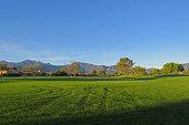Golf Course Tracks