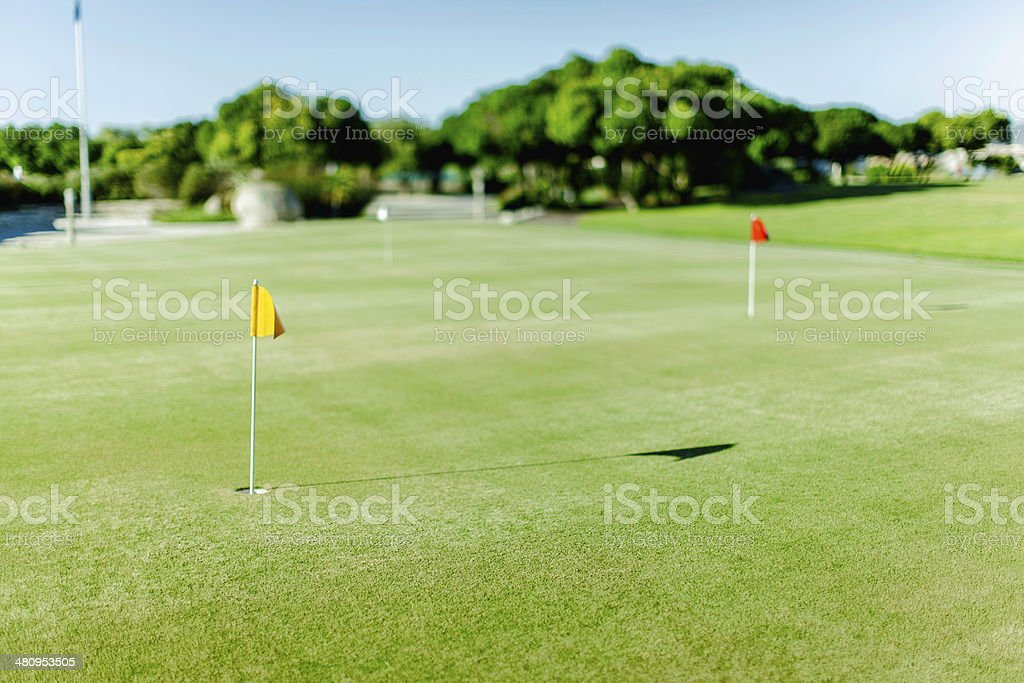 Golf course with 2 flags on the field in Langebaan royalty-free stock photo