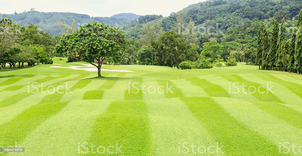 golf court with trees stock photo