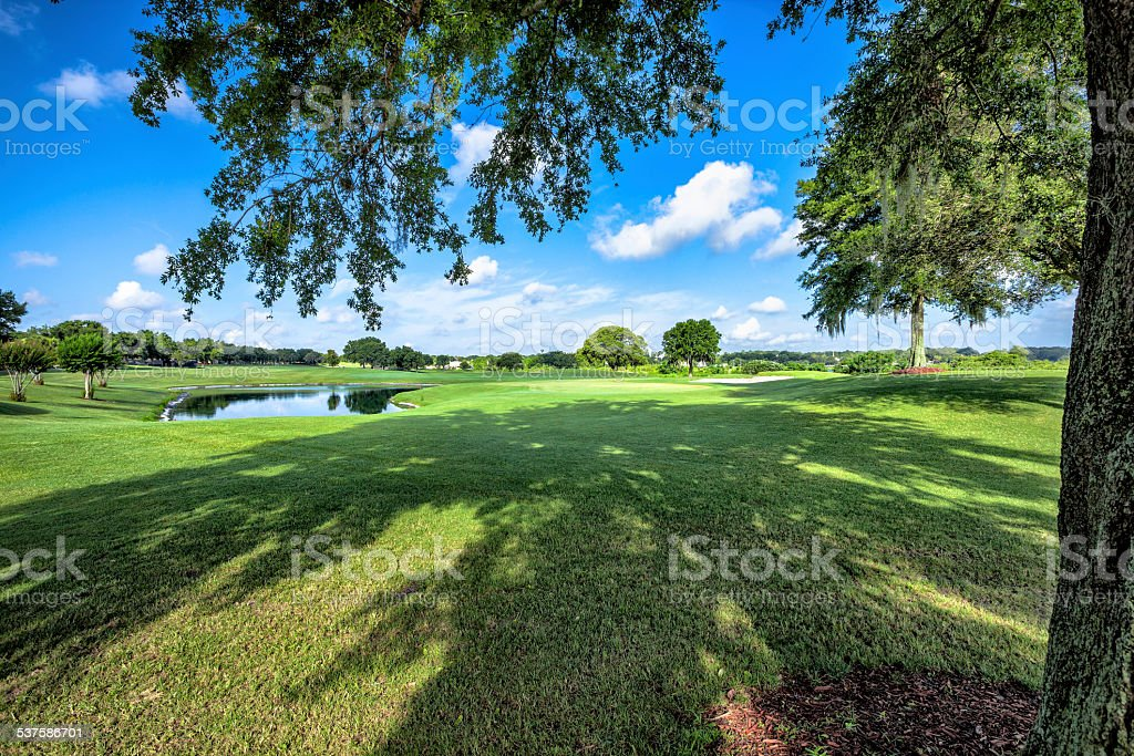 Golf fields and beautiful summer landscapes. stock photo