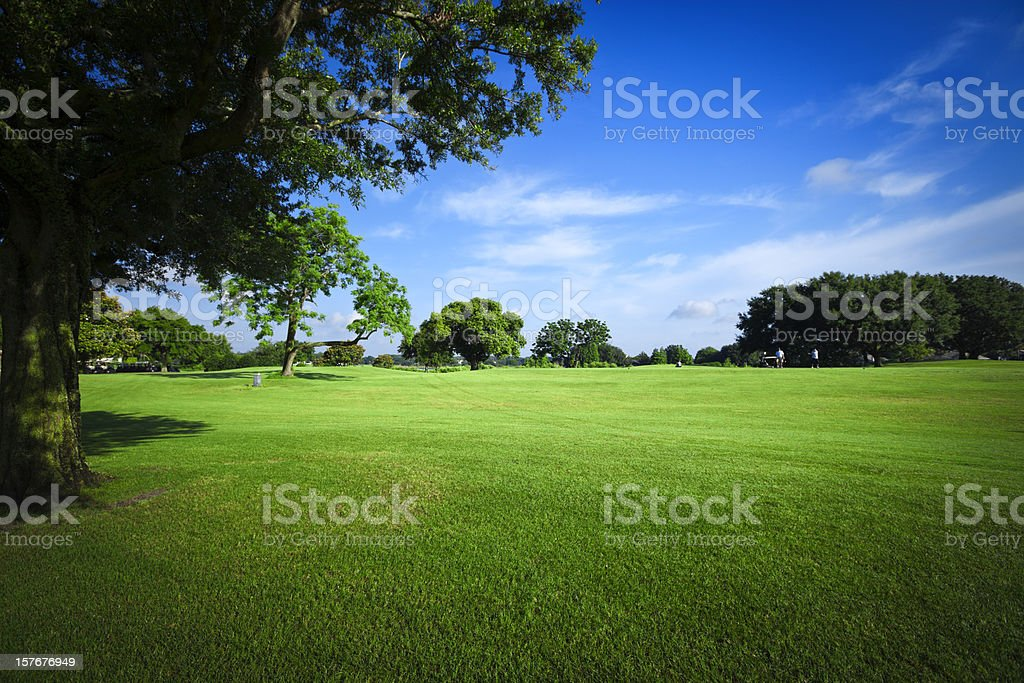 Golf Fields royalty-free stock photo