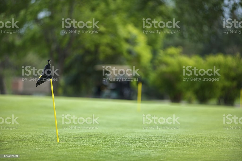 Golf flag on a beautifully maintained putting green. royalty-free stock photo