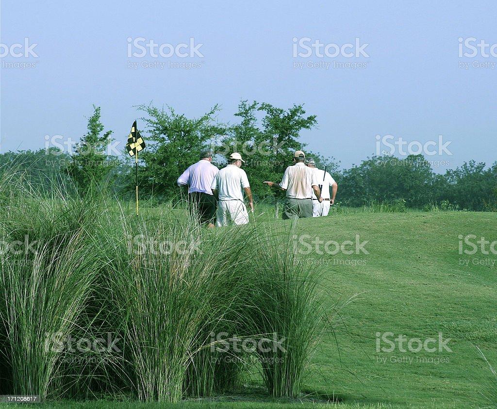 Golf Foursome royalty-free stock photo