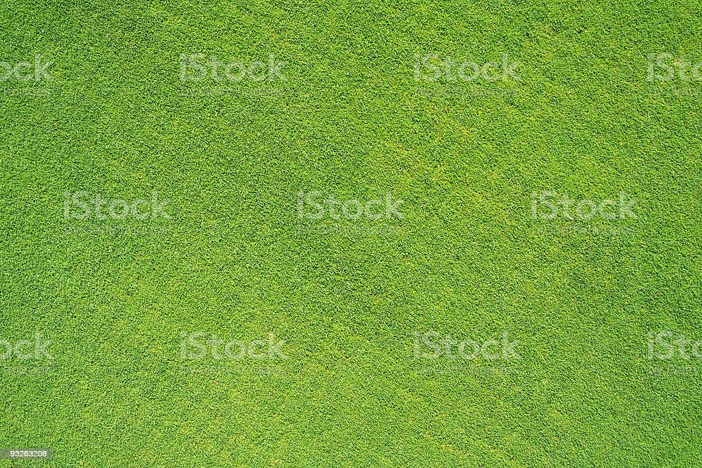 Golf grass field royalty-free stock photo