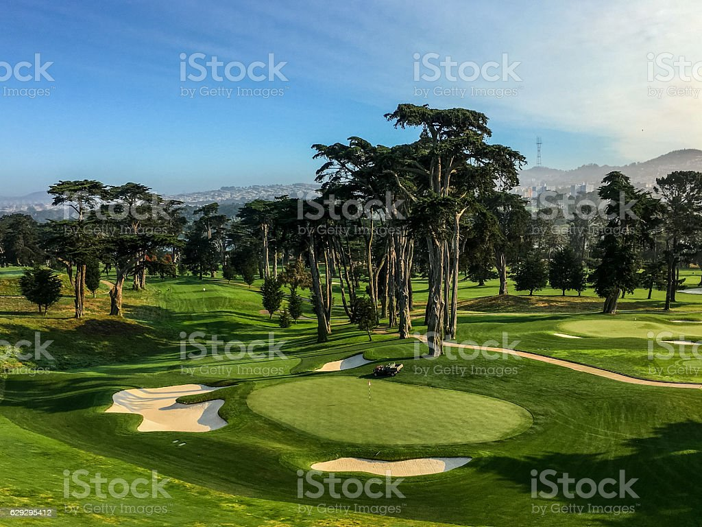 Golf green and golf hole stock photo
